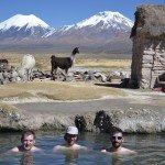 Lamas, alpiniste et Parinacota
